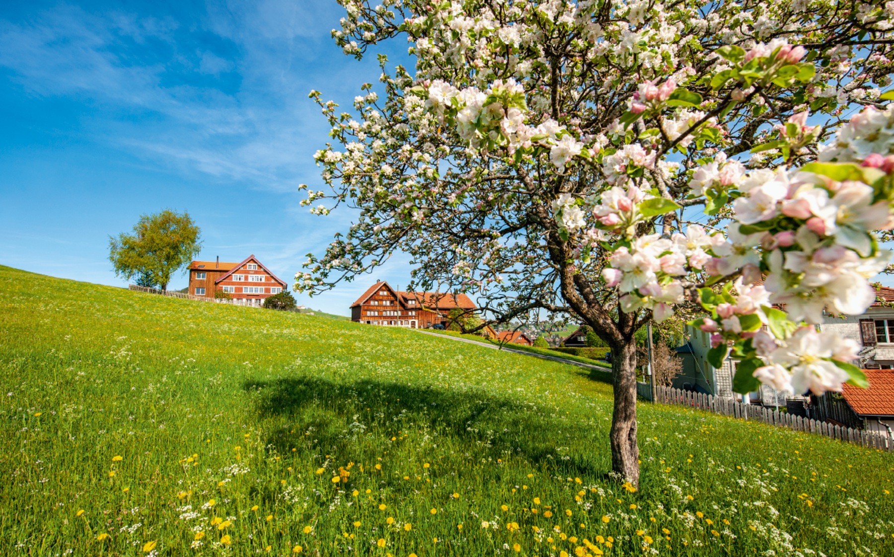 Appenzeller Bildkalender 2019 April