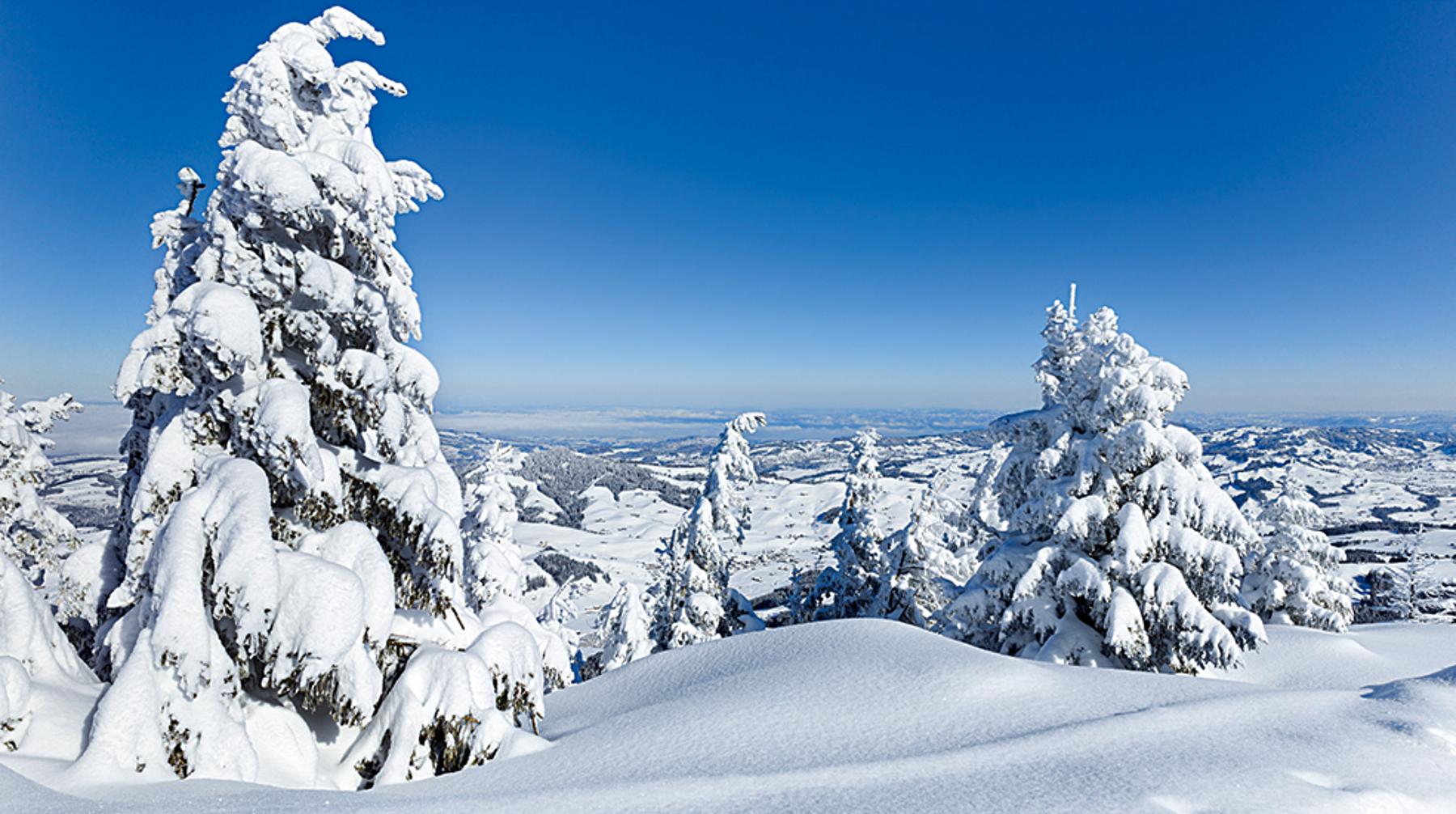 Panorama Appenzellerland 2019 Februar