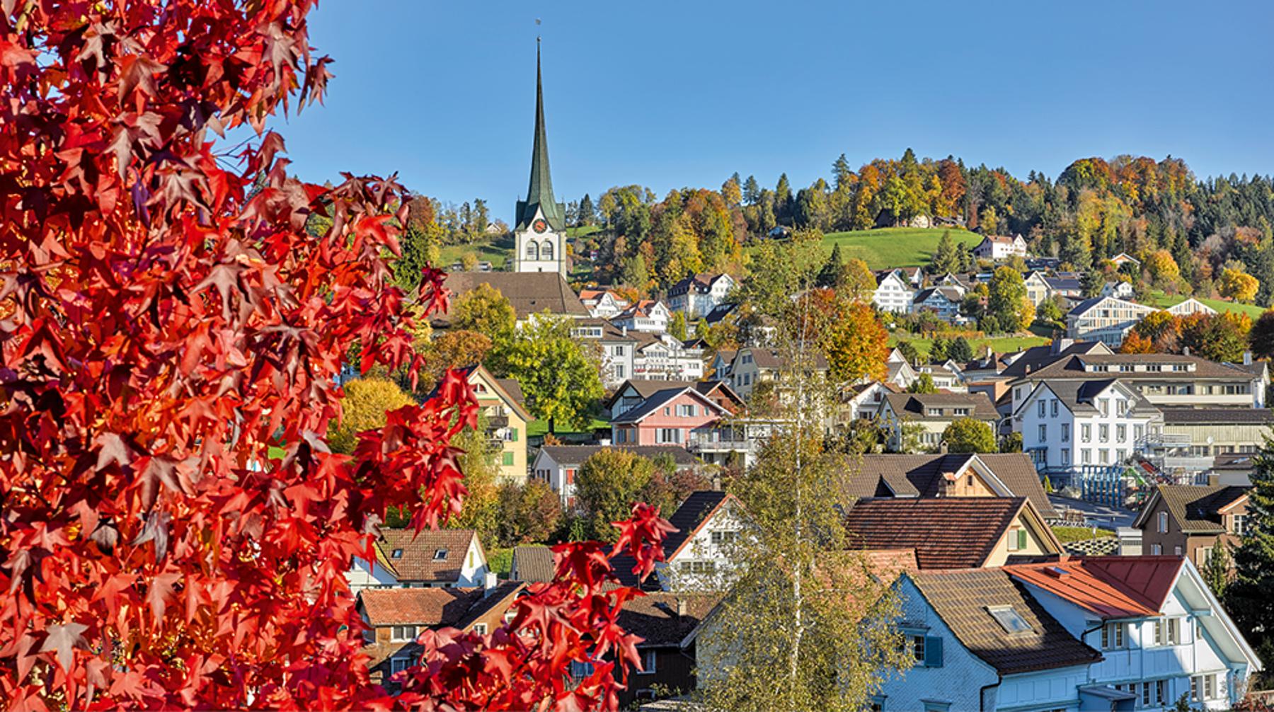 Panorama Appenzellerland 2019 Oktober