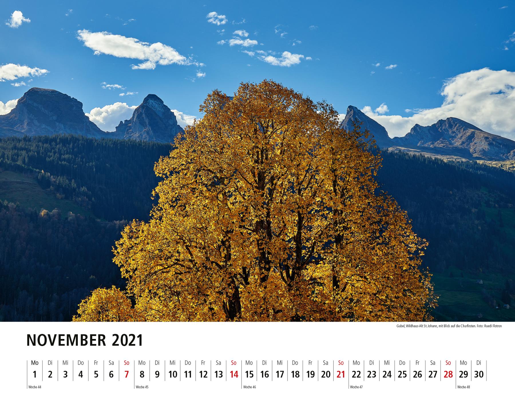 Toggenburger Bildkalender 2021 November