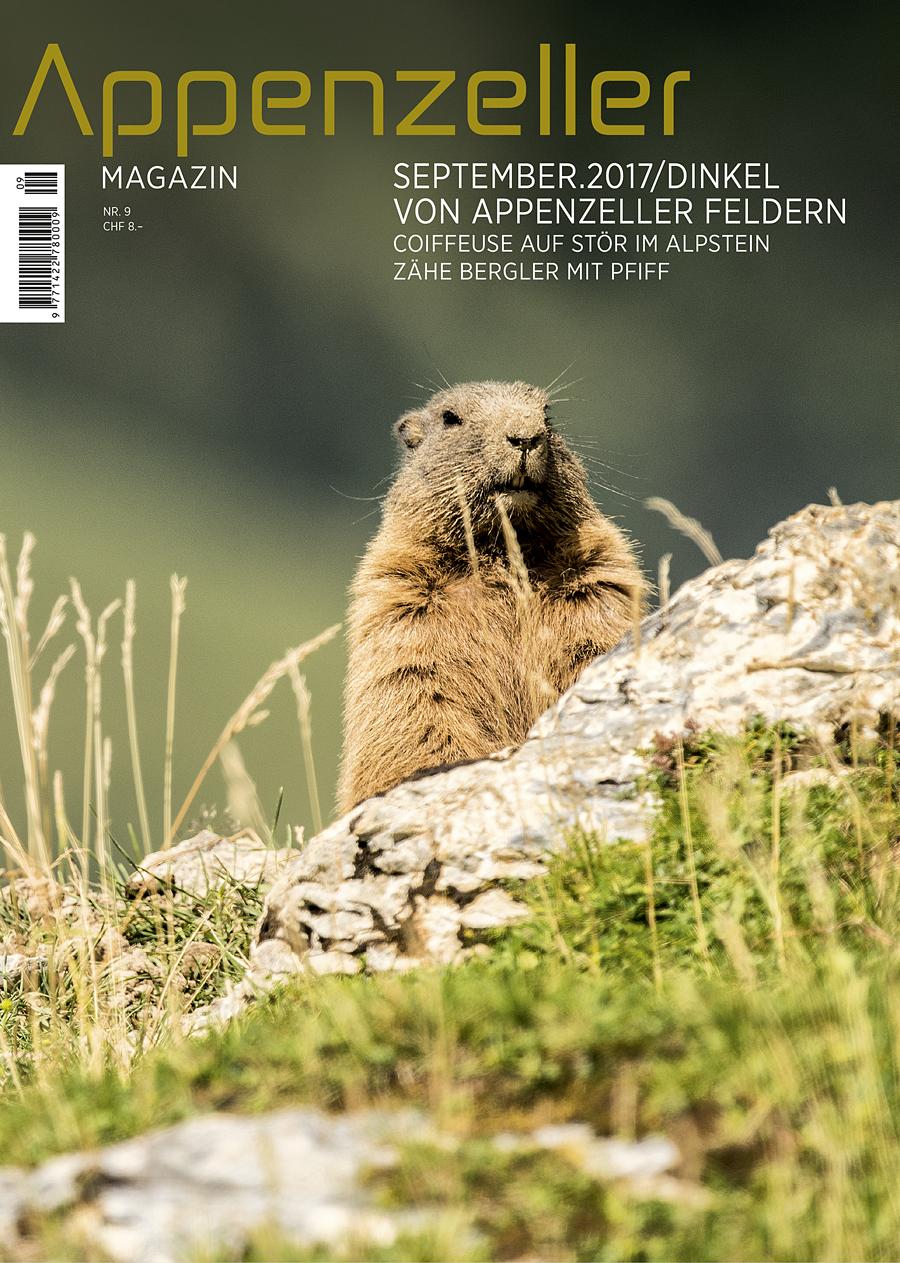 Appenzeller Magazin September 2017 Dinkel von Appenzeller Feldern Murmeltiere im Alpstein Coiffeuse im Alpstein