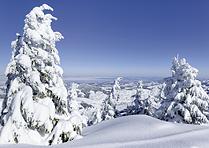 Karte Winter auf dem Kronberg