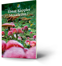 Ebnat-Kappler Mosaik 2017